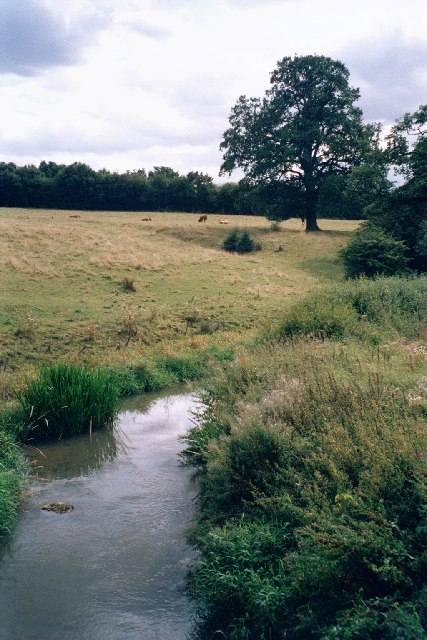 Evenlode river from Catsham bridge