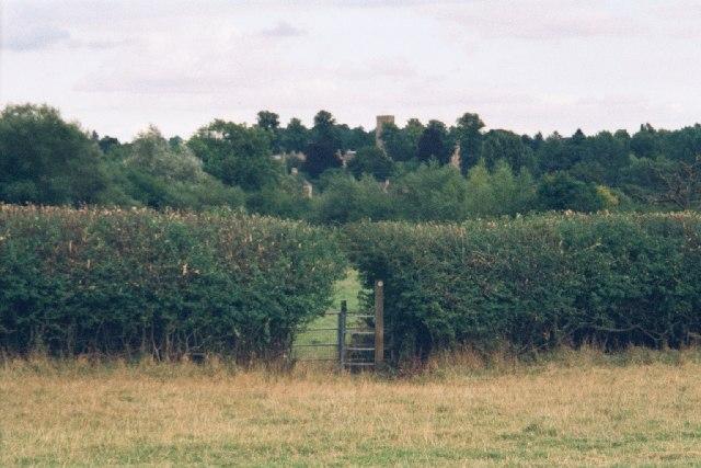 Gate in hedge near Charlbury