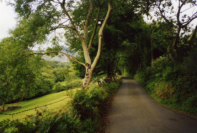 Llanfrothen: the lane to Croesor