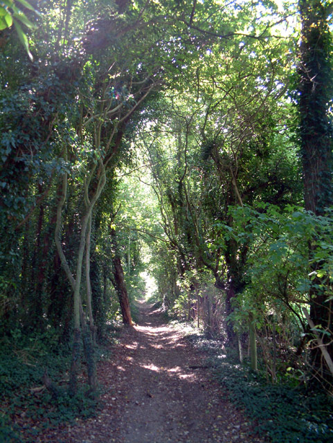 Bridleway from Featherbed Lane to Farleigh Court Road, CRo