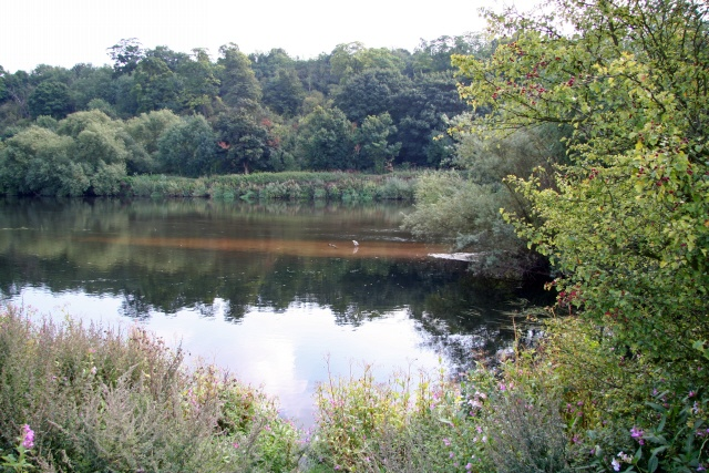 The River Trent at Clifton Grove
