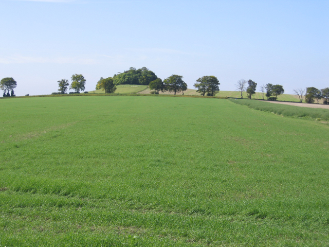Goffers Knoll, Melbourn, Cambs