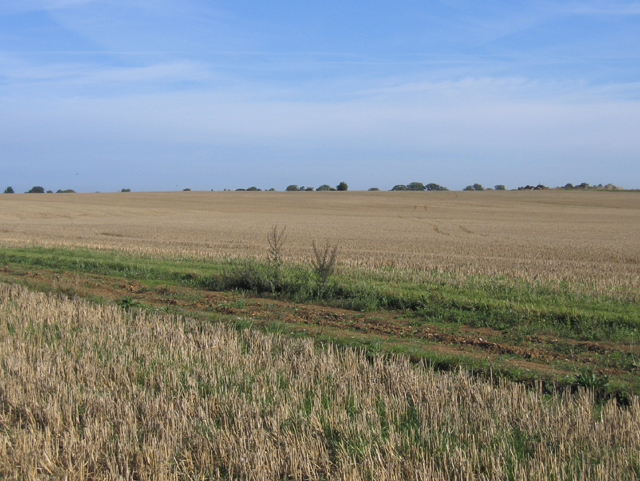 Farmland south of Whittlesford, Cambs