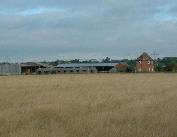 Wayside Farm