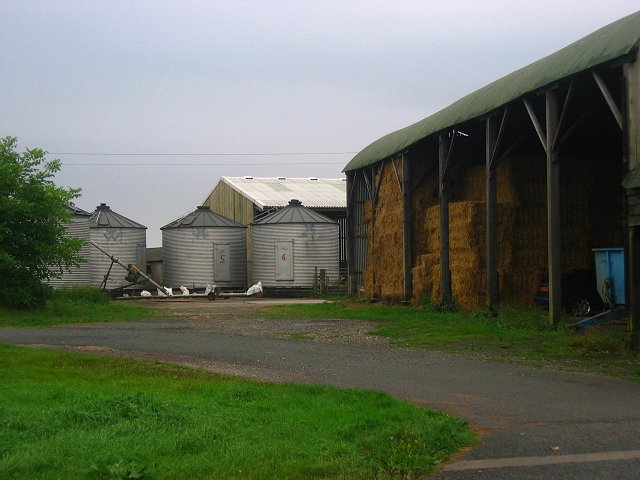 Farmyard, Wooferton Court.