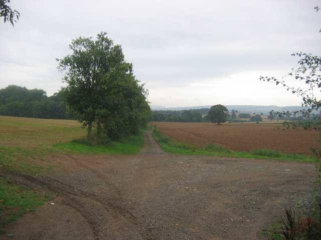 Farmland, Berrington Hall.