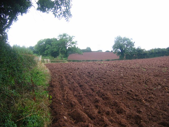 Ploughed fields, Tunnel Lane.