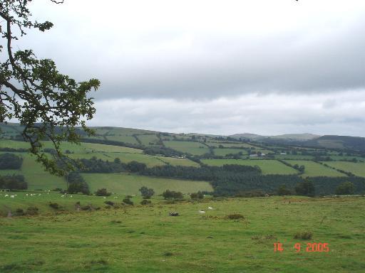Farmland at Ty Newydd