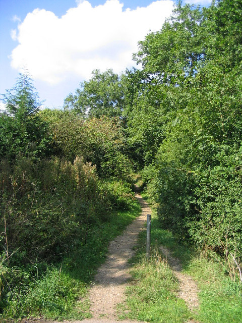 Footpath, Thorndon Country Park, Brentwood
