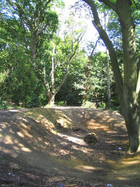 Woodland, Thorndon Park, Brentwood