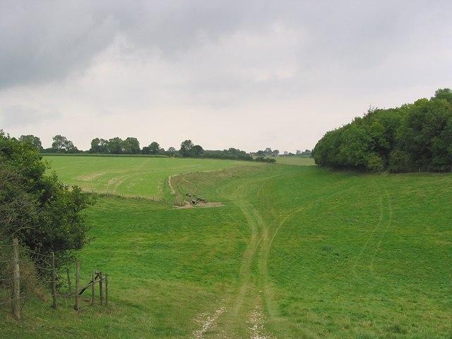 Wayfarer's Walk looking towards Lomer Farm