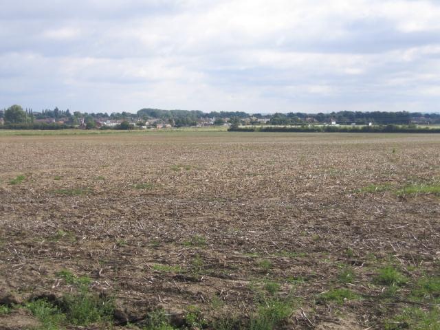 Farmland, Clifton, Beds