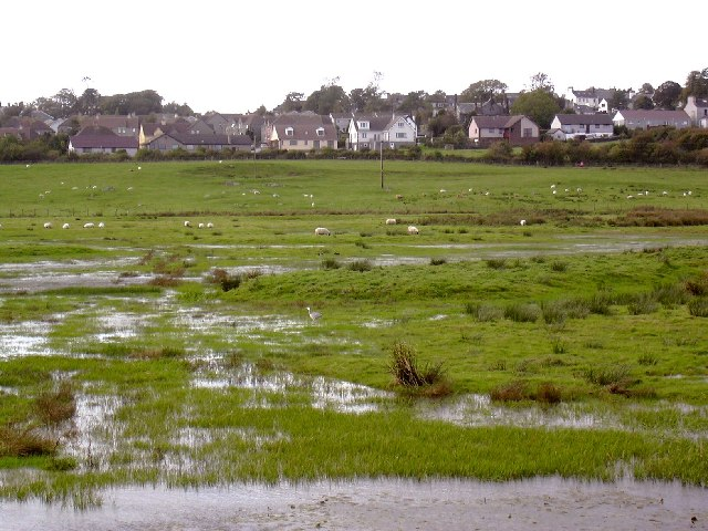 Wigtown Bay Nature Reserve
