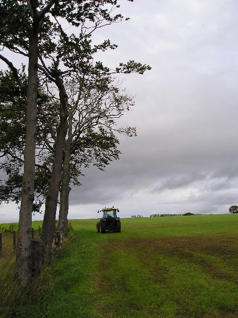 Field with Tractor