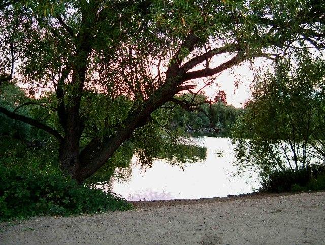 Parsloes Park Pond