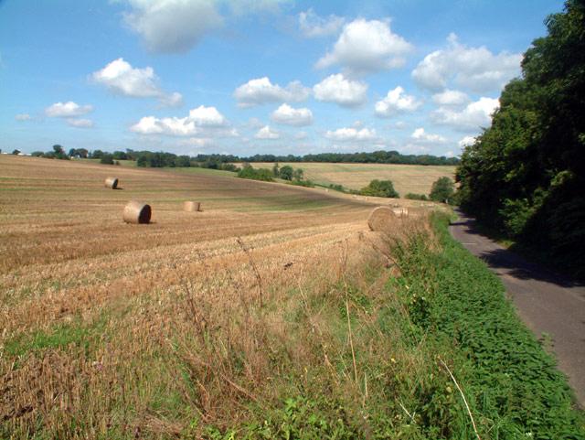 Beddlestead Lane, Chelsham, CR6