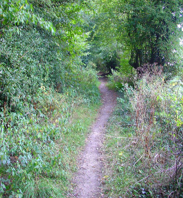 Bridleway near junction of Grouse Lane and Blackhouse Road, Colgate, West Sussex