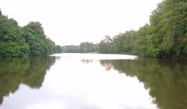 Hammer Pond, Bucks Head, West Sussex