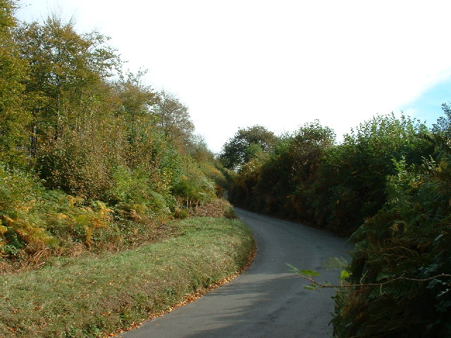 Bickleigh Bridge lane