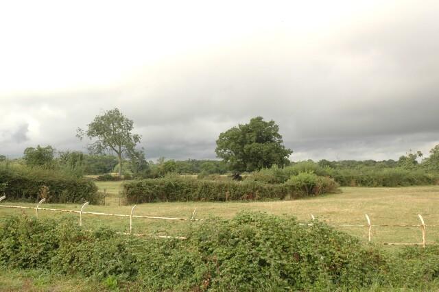 Fields near White Ladies Aston