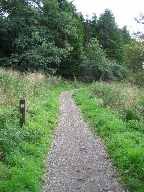 West Highland Way in Craigallian Woods, Stirlingshire