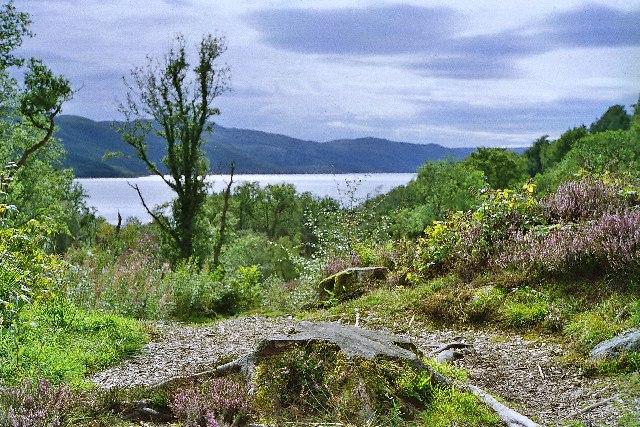 Path to Sailean nan Cuileag (Bay of the Flies), Sunart