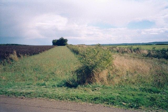 End of Green Lane