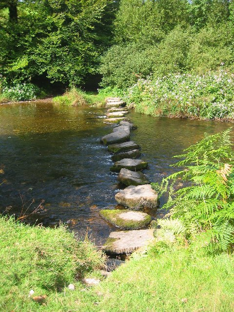 Stepping Stones across River Barle
