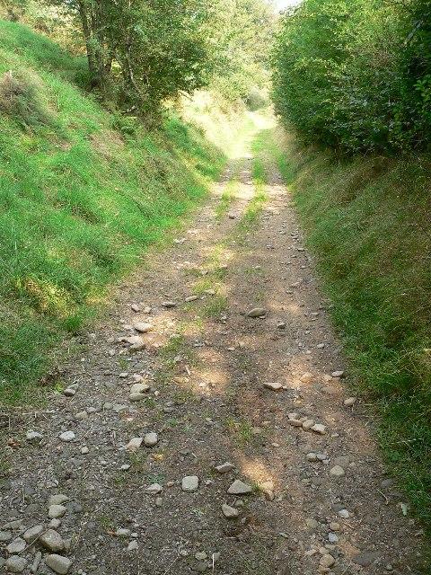 Path down to Court Farm