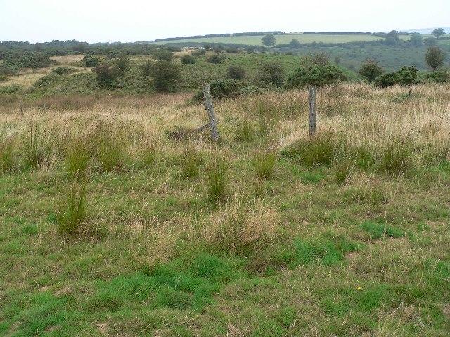 Moorland looking North towards Road Hill