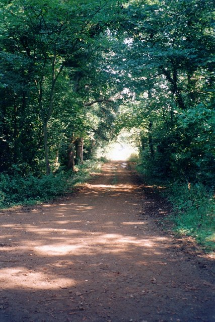 Groveash Lane