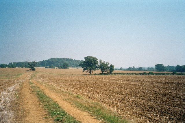 Fields in the Mid-West (Oxfordshire)