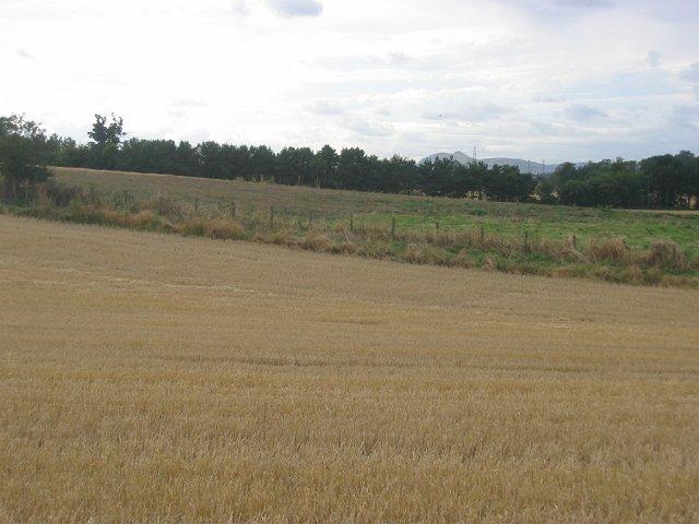 Farmland, Chesterhill.