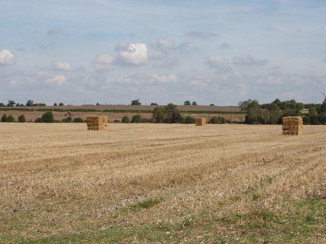Fields near Kimble Wick