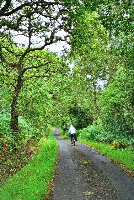 Peaceful Road, Appin