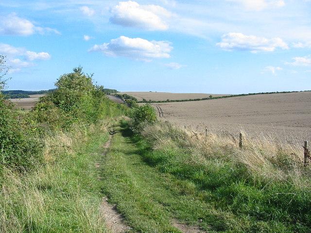 Bridleway between Cranborne and Pentridge
