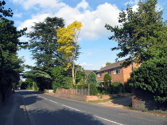 Road into Newbury