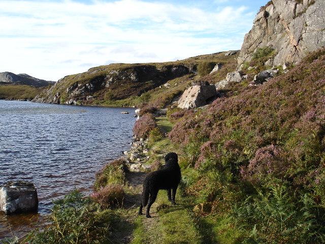 Shieldaig path running next to Loch Braigh Horrisdale