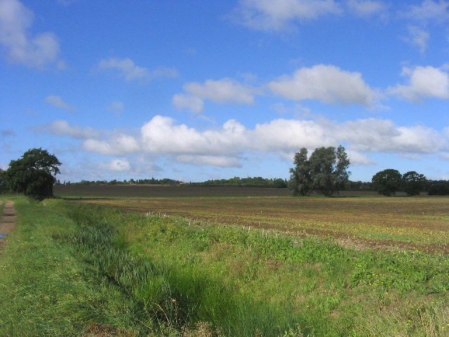 Fields at Barleylands Farm, Great Burstead, Essex