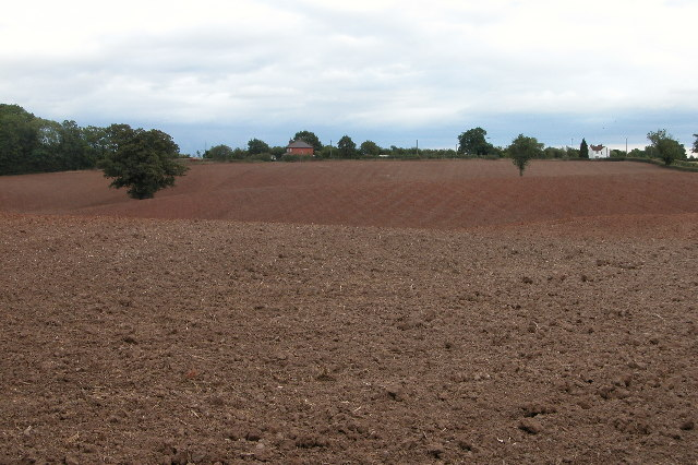 Farmland near Collett's Green