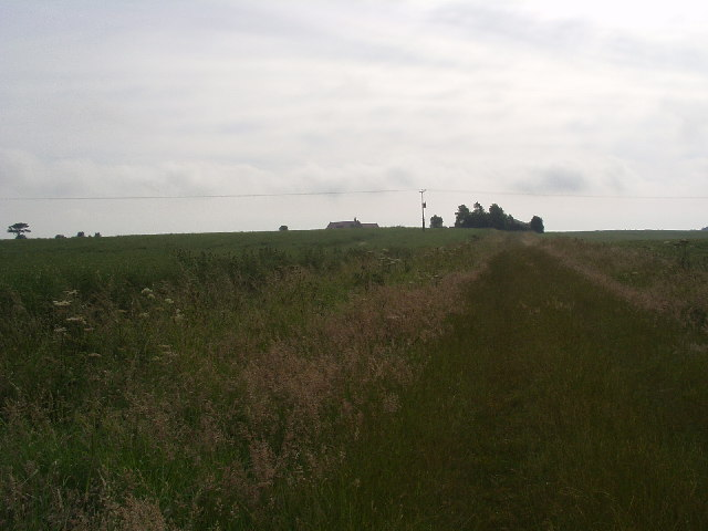 Farm Track West of Roos.