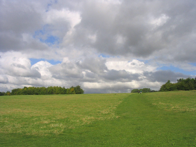 Queens Park Country Park, Billericay