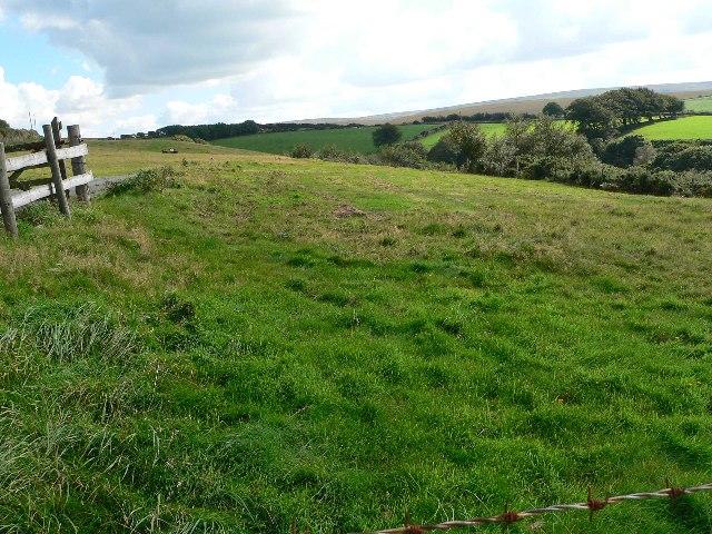 Sheepfield North of Farley Water Farm