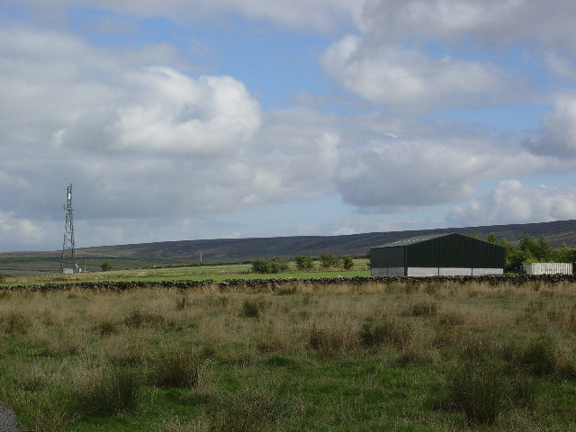 Radio Mast and Moss Farm