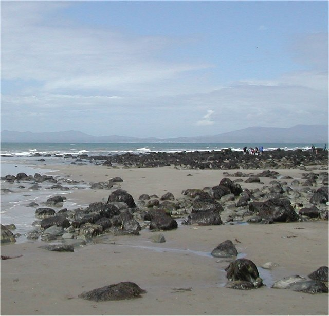 Shell Island beach junction