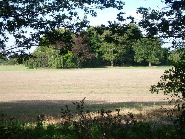 Fields beside Headley Road