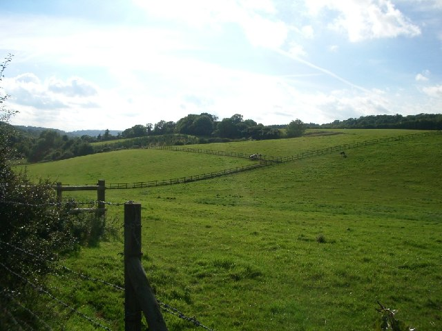 Hillside north of Lodgebottom Road