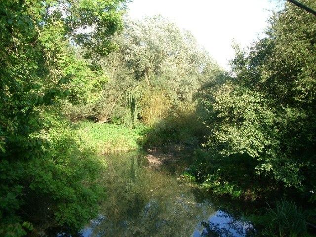 River Mole near Dorking