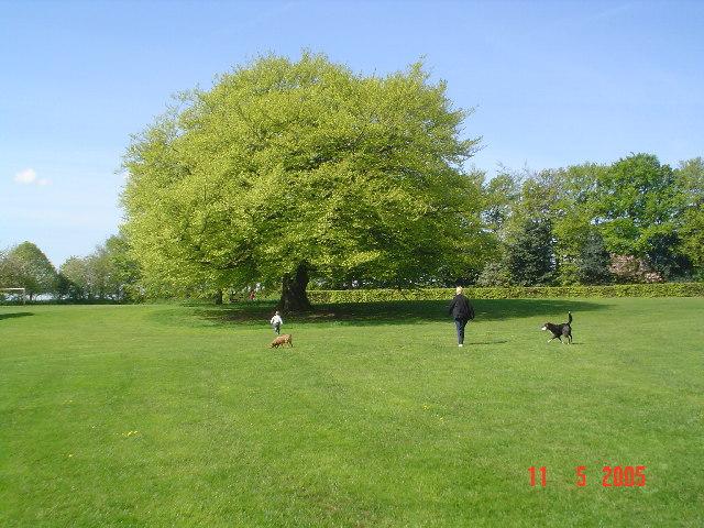 Farnley Park, Leeds.