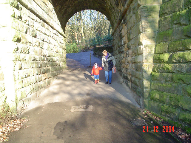 Tunnel beneath dismantled railway at Wilton Park.